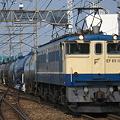写真: pf1041-20080429