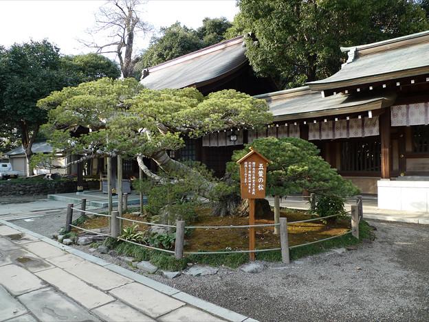 水前寺成趣園・出水神社(6)