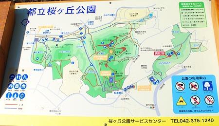 yuuhinooka_tama_map