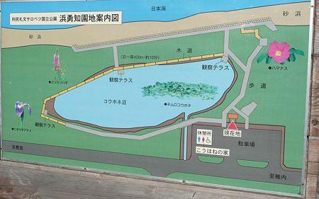 kouhonenuma_map
