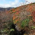 IMG_8902那須 茶臼岳 姥ヶ平の紅葉2