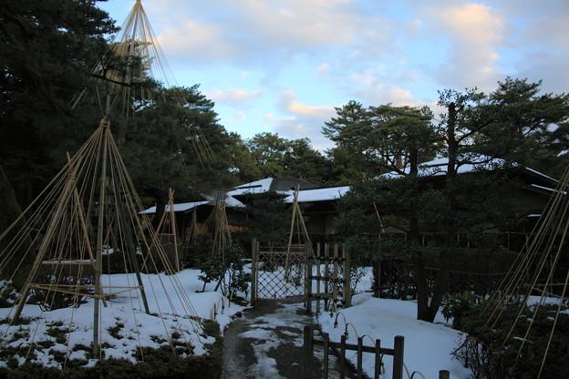 兼六園 時雨亭 雪つり