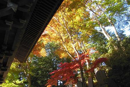 四天王門の秋