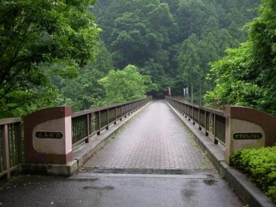 この橋を渡って・・・