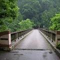 写真: この橋を渡って・・・