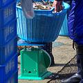 Photos: 大漁だね !!