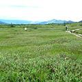 Photos: 富山まで歩いて行けそう×××