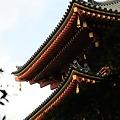 高幡不動・五重の塔1